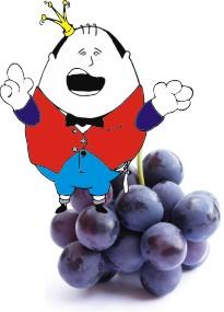panciotto e l'uva